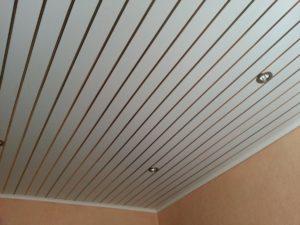 Потолок панель пвх